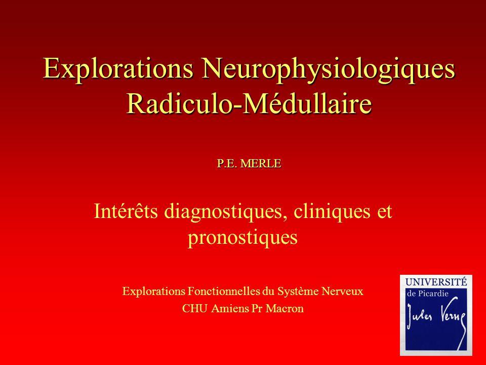 Explorations Neurophysiologiques Radiculo-Médullaire P.E. MERLE Intérêts diagnostiques, cliniques et pronostiques Explorations Fonctionnelles du Systè