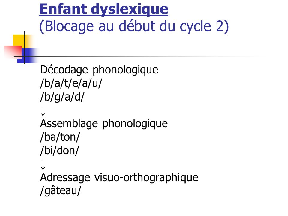 Enfant dyslexique (Blocage au début du cycle 2) Décodage phonologique /b/a/t/e/a/u/ /b/g/a/d/ Assemblage phonologique /ba/ton/ /bi/don/ Adressage visu