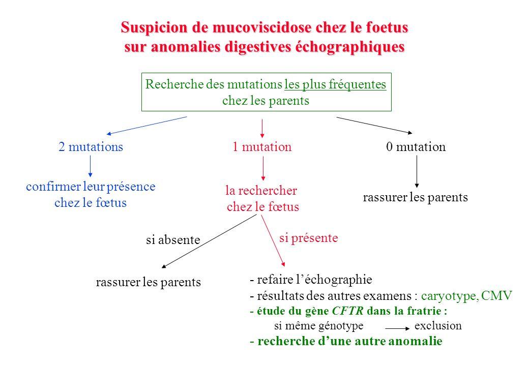 Recherche des mutations les plus fréquentes chez les parents 2 mutations confirmer leur présence chez le fœtus 0 mutation rassurer les parents 1 mutation la rechercher chez le fœtus si absente rassurer les parents si présente - refaire léchographie - résultats des autres examens : caryotype, CMV - étude du gène CFTR dans la fratrie : si même génotype exclusion - recherche dune autre anomalie Suspicion de mucoviscidose chez le foetus sur anomalies digestives échographiques
