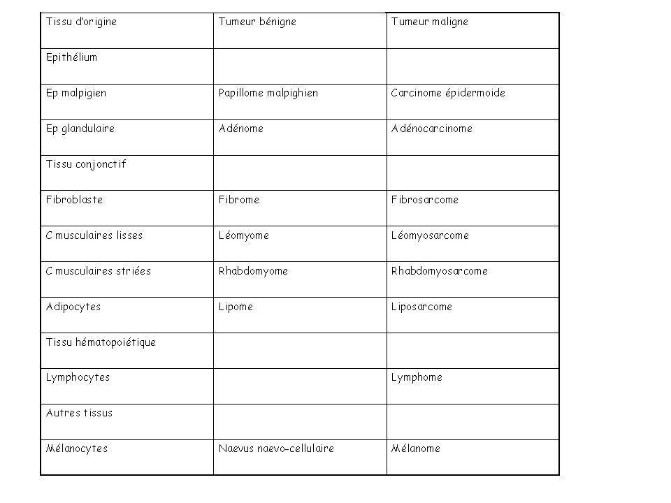 4- Bases de la nomenclature des tumeurs Nomenclature usuelle –Le préfixe correspond à la cellule d origine - Adéno / tumeur glandulaire, leomyo / tume