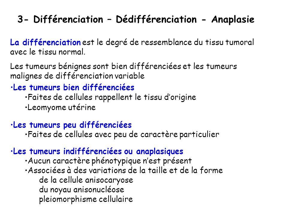 3- Différenciation – Dédifférenciation - Anaplasie La différenciation est le degré de ressemblance du tissu tumoral avec le tissu normal.