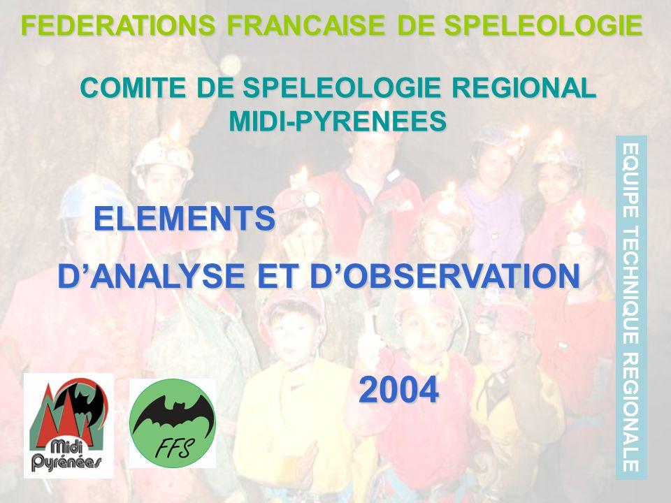 DANALYSE ET DOBSERVATION FEDERATIONS FRANCAISE DE SPELEOLOGIE COMITE DE SPELEOLOGIE REGIONAL MIDI-PYRENEES EQUIPE TECHNIQUE REGIONALE ELEMENTS 2004