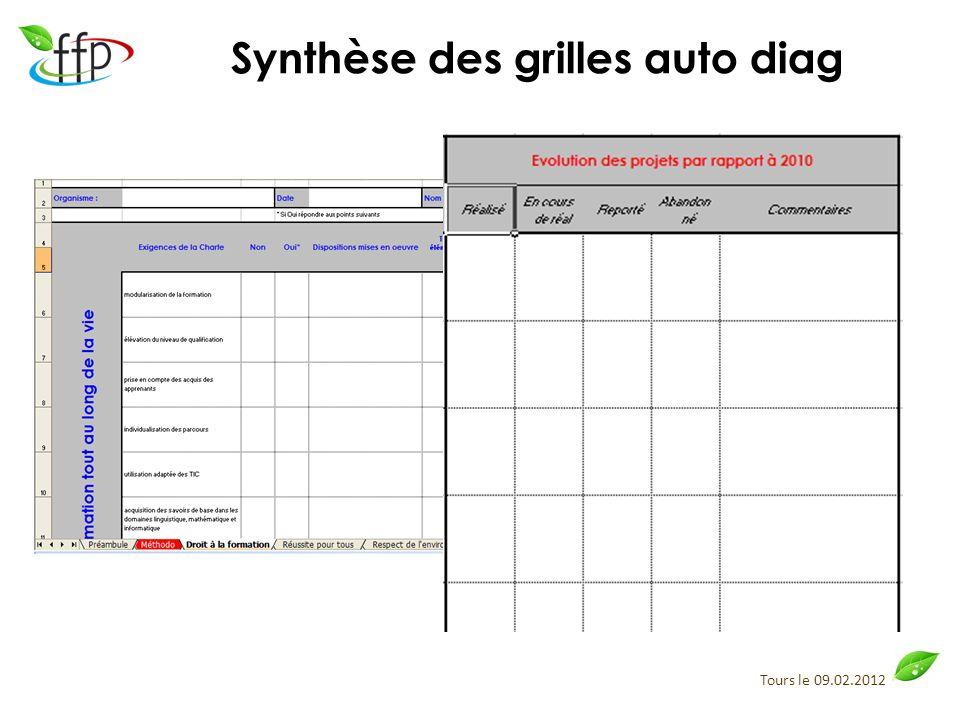 Tours le 09.02.2012 Synthèse des grilles auto diag