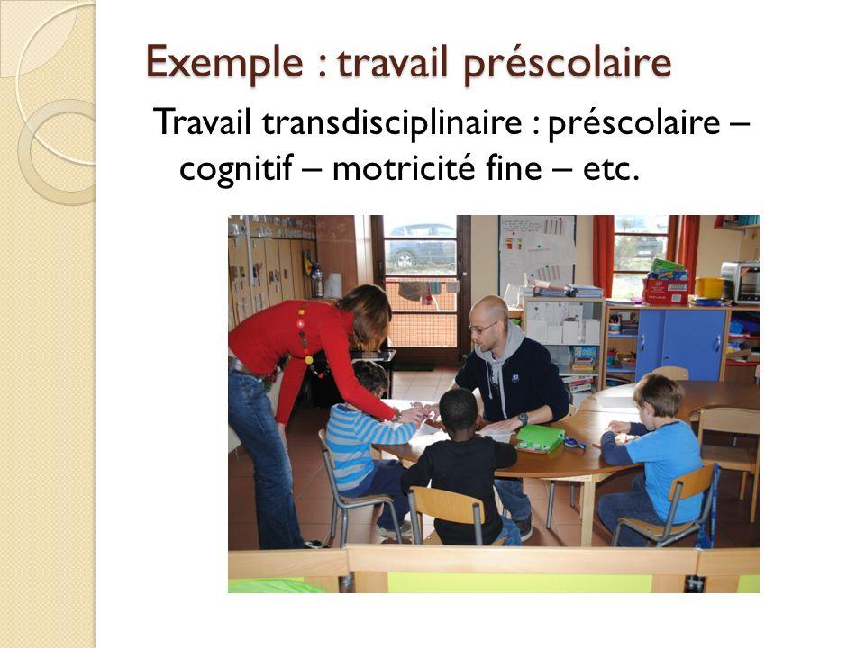 Exemple : travail préscolaire Travail transdisciplinaire : préscolaire – cognitif – motricité fine – etc.