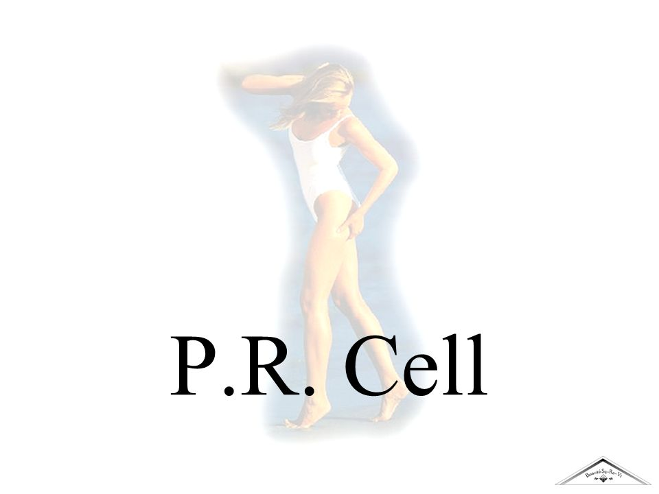 P.R. Cell