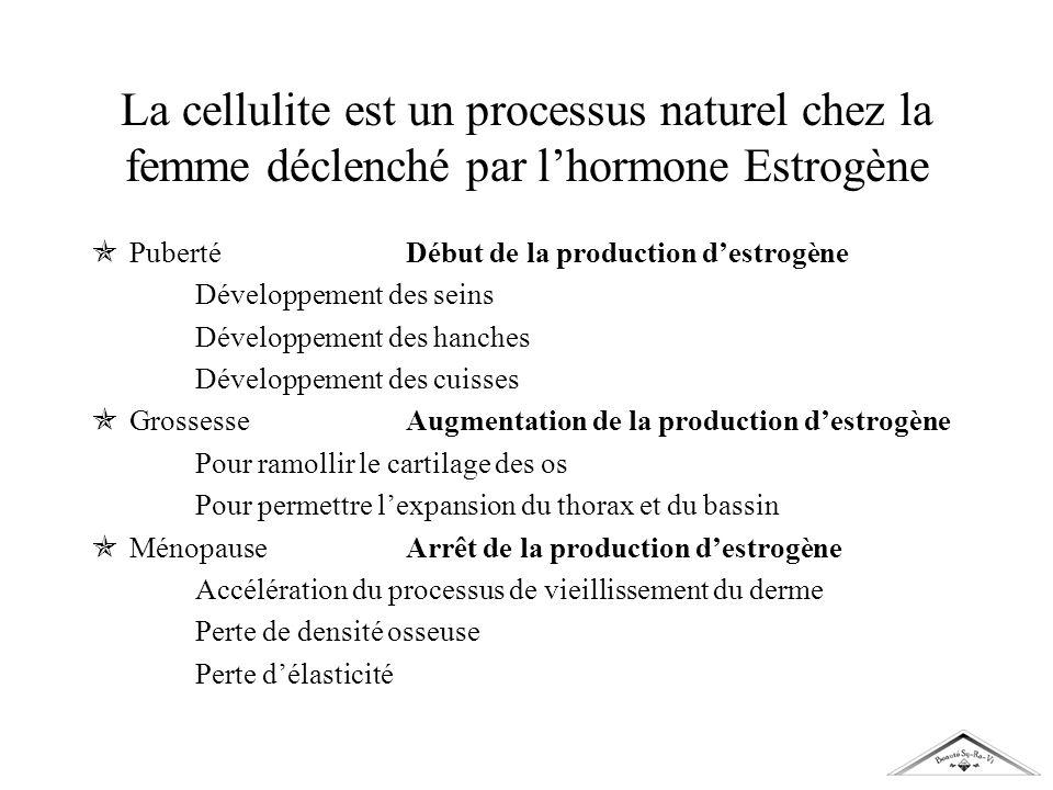 La cellulite est un processus naturel chez la femme déclenché par lhormone Estrogène PubertéDébut de la production destrogène Développement des seins