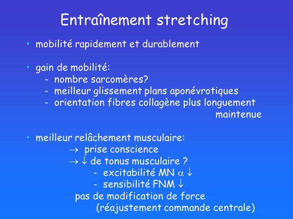 mobilité rapidement et durablement gain de mobilité: - nombre sarcomères? - meilleur glissement plans aponévrotiques - orientation fibres collagène pl