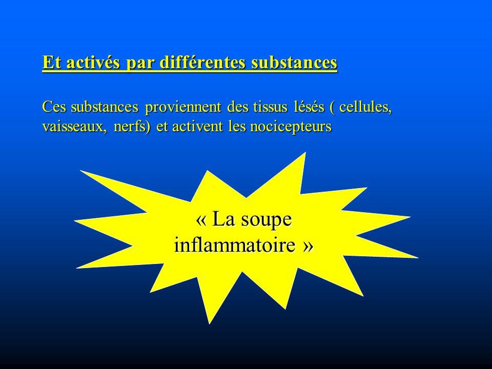 Et activés par différentes substances Ces substances proviennent des tissus lésés ( cellules, vaisseaux, nerfs) et activent les nocicepteurs « La soupe inflammatoire »
