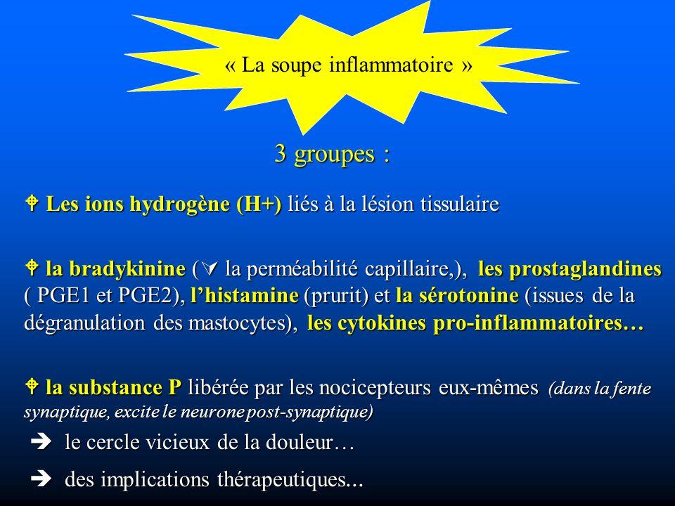 3 groupes : Les ions hydrogène (H+) liés à la lésion tissulaire Les ions hydrogène (H+) liés à la lésion tissulaire la bradykinine ( la perméabilité capillaire,), les prostaglandines ( PGE1 et PGE2), lhistamine (prurit) et la sérotonine (issues de la dégranulation des mastocytes), les cytokines pro-inflammatoires… la bradykinine ( la perméabilité capillaire,), les prostaglandines ( PGE1 et PGE2), lhistamine (prurit) et la sérotonine (issues de la dégranulation des mastocytes), les cytokines pro-inflammatoires… la substance P libérée par les nocicepteurs eux-mêmes (dans la fente synaptique, excite le neurone post-synaptique) la substance P libérée par les nocicepteurs eux-mêmes (dans la fente synaptique, excite le neurone post-synaptique) le cercle vicieux de la douleur… le cercle vicieux de la douleur… des implications thérapeutiques...