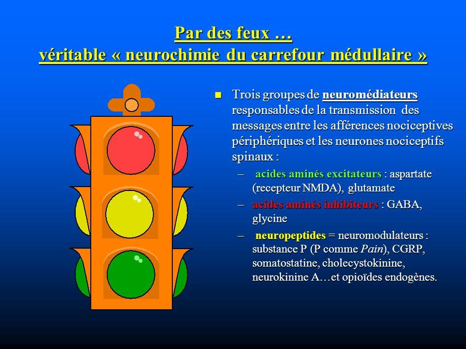 Par des feux … véritable « neurochimie du carrefour médullaire » Trois groupes de neuromédiateurs responsables de la transmission des messages entre les afférences nociceptives périphériques et les neurones nociceptifs spinaux : – acides aminés excitateurs : aspartate (recepteur NMDA), glutamate –acides aminés inhibiteurs : GABA, glycine – neuropeptides = neuromodulateurs : substance P (P comme Pain), CGRP, somatostatine, cholecystokinine, neurokinine A…et opioïdes endogènes.