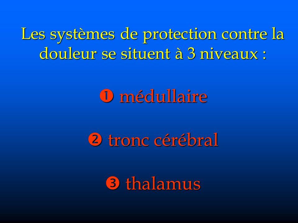 Les systèmes de protection contre la douleur se situent à 3 niveaux : médullaire tronc cérébral thalamus