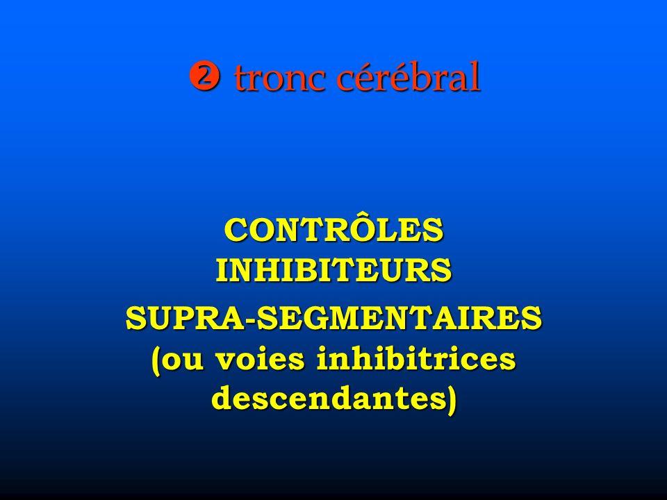 tronc cérébral tronc cérébral CONTRÔLES INHIBITEURS SUPRA-SEGMENTAIRES (ou voies inhibitrices descendantes)