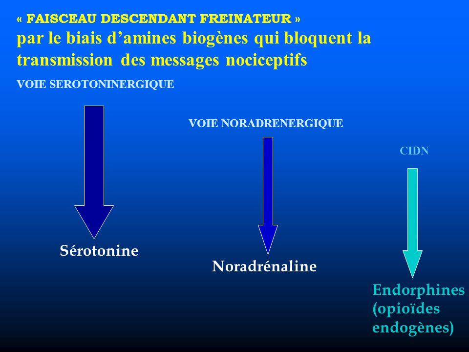 « FAISCEAU DESCENDANT FREINATEUR » par le biais damines biogènes qui bloquent la transmission des messages nociceptifs VOIE SEROTONINERGIQUE VOIE NORADRENERGIQUE Sérotonine Noradrénaline CIDN Endorphines (opioïdes endogènes)