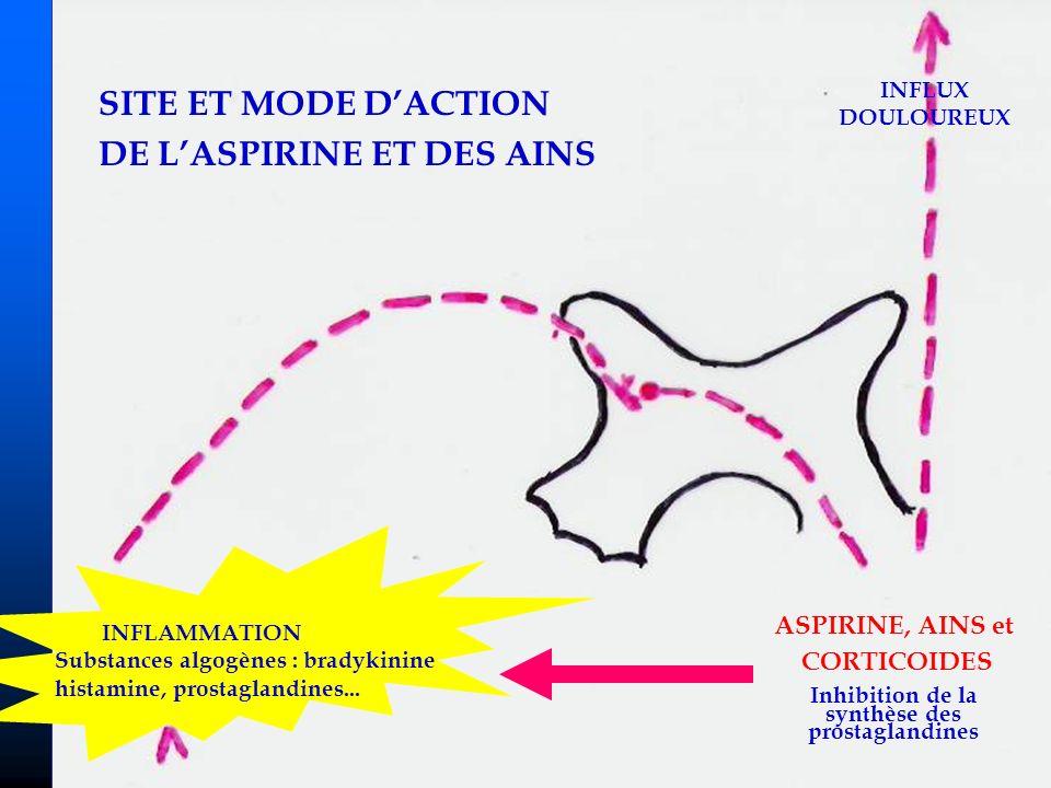 INFLUX DOULOUREUX INFLAMMATION Substances algogènes : bradykinine histamine, prostaglandines...
