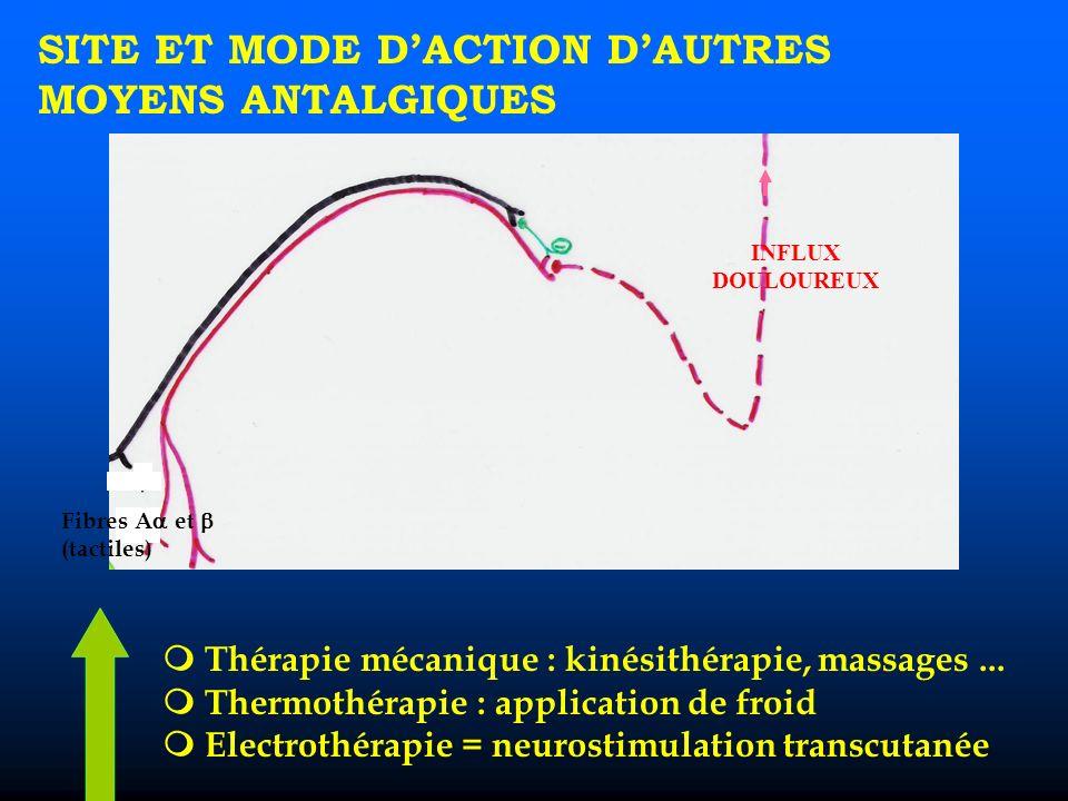 SITE ET MODE DACTION DAUTRES MOYENS ANTALGIQUES Thérapie mécanique : kinésithérapie, massages...