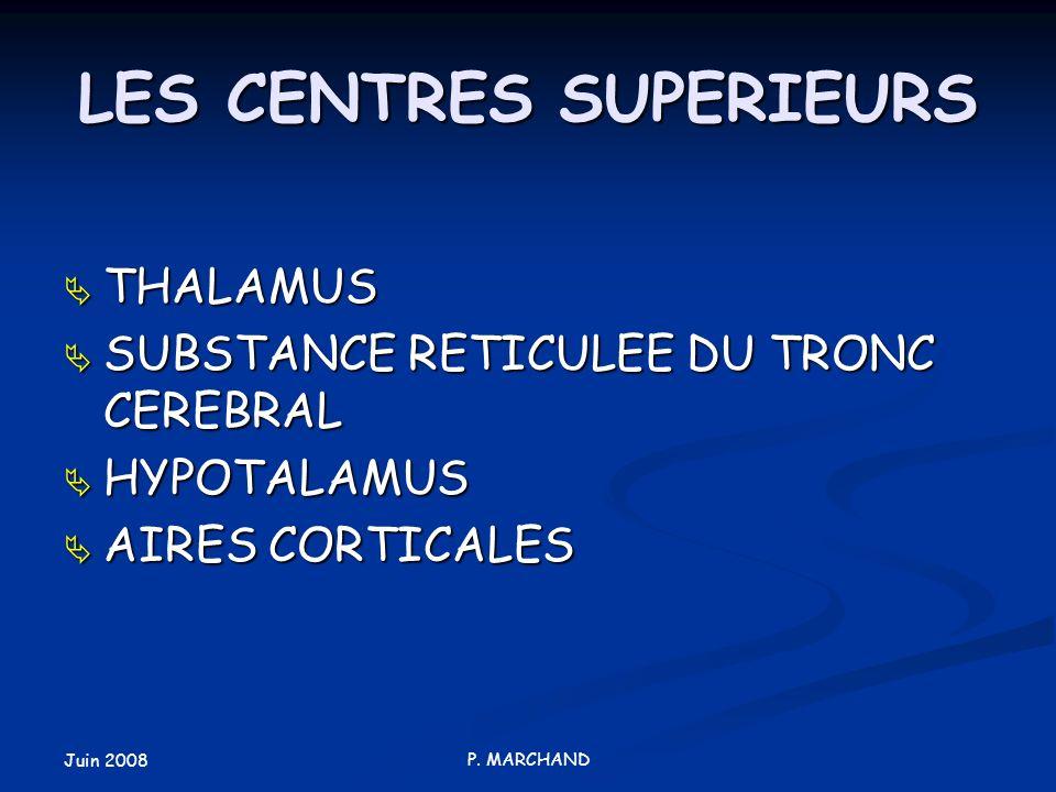 Juin 2008 P. MARCHAND LES CENTRES SUPERIEURS THALAMUS THALAMUS SUBSTANCE RETICULEE DU TRONC CEREBRAL SUBSTANCE RETICULEE DU TRONC CEREBRAL HYPOTALAMUS