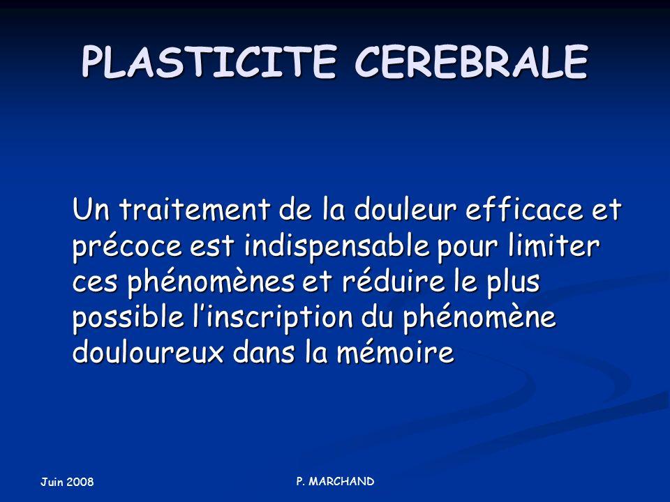 Juin 2008 P. MARCHAND PLASTICITE CEREBRALE Un traitement de la douleur efficace et précoce est indispensable pour limiter ces phénomènes et réduire le