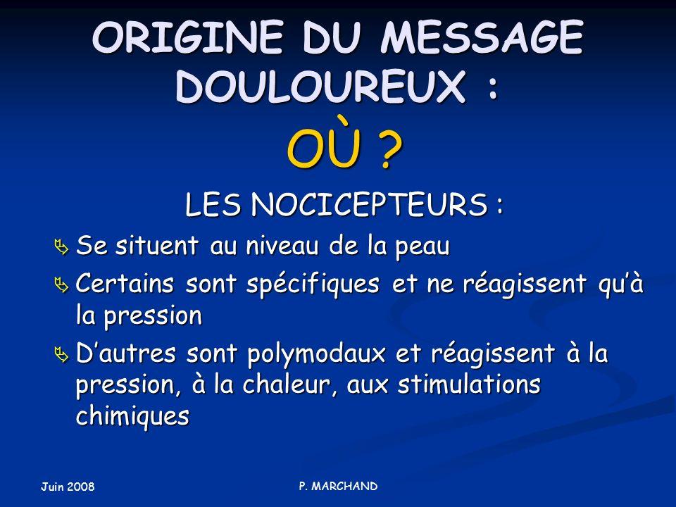 Juin 2008 P. MARCHAND ORIGINE DU MESSAGE DOULOUREUX : OÙ ? LES NOCICEPTEURS : Se situent au niveau de la peau Se situent au niveau de la peau Certains