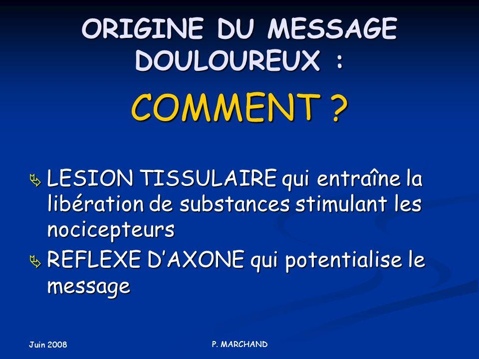Juin 2008 P. MARCHAND ORIGINE DU MESSAGE DOULOUREUX : COMMENT ? LESION TISSULAIRE qui entraîne la libération de substances stimulant les nocicepteurs