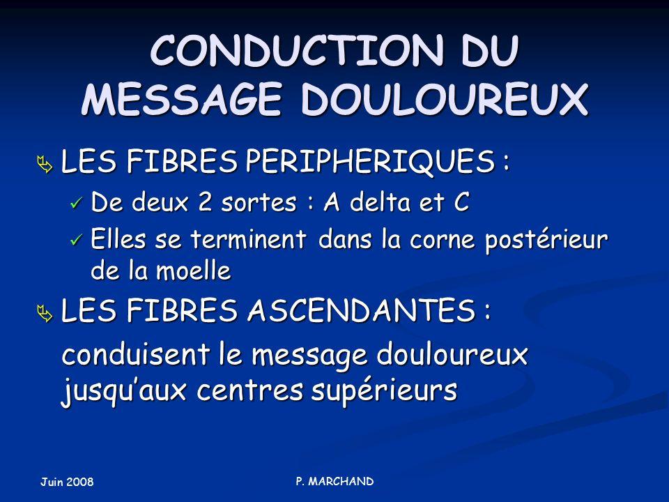 Juin 2008 P. MARCHAND CONDUCTION DU MESSAGE DOULOUREUX LES FIBRES PERIPHERIQUES : LES FIBRES PERIPHERIQUES : De deux 2 sortes : A delta et C De deux 2