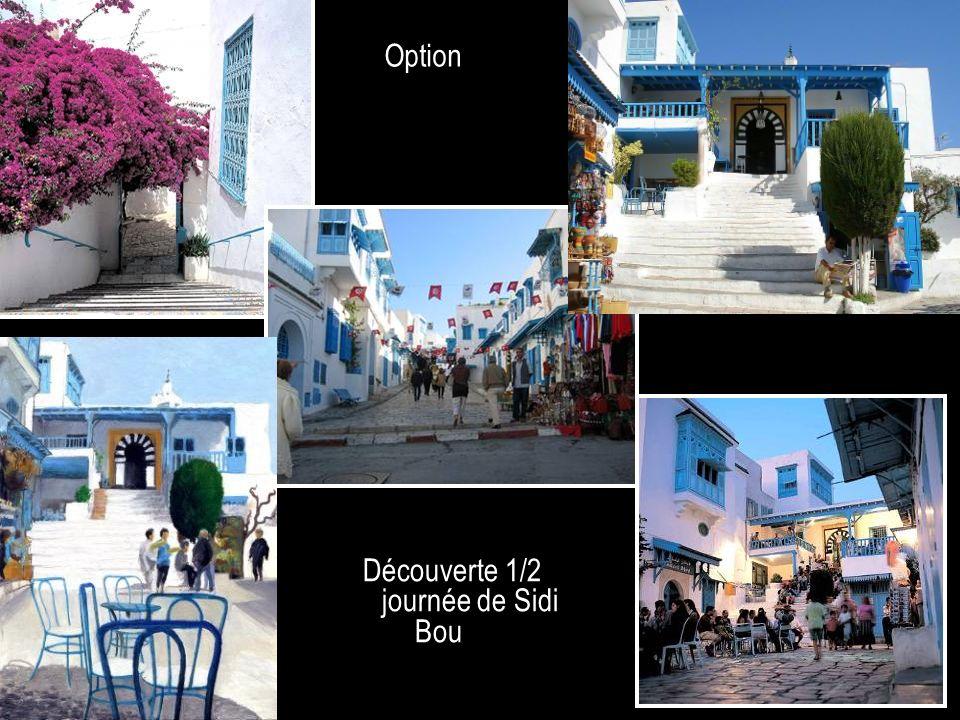 Découverte 1/2 journée de Sidi Bou Said Option