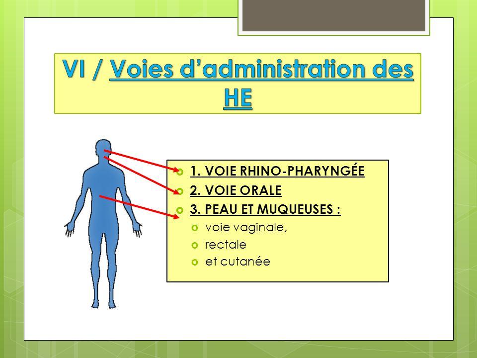 1. VOIE RHINO-PHARYNGÉE 2. VOIE ORALE 3. PEAU ET MUQUEUSES : voie vaginale, rectale et cutanée