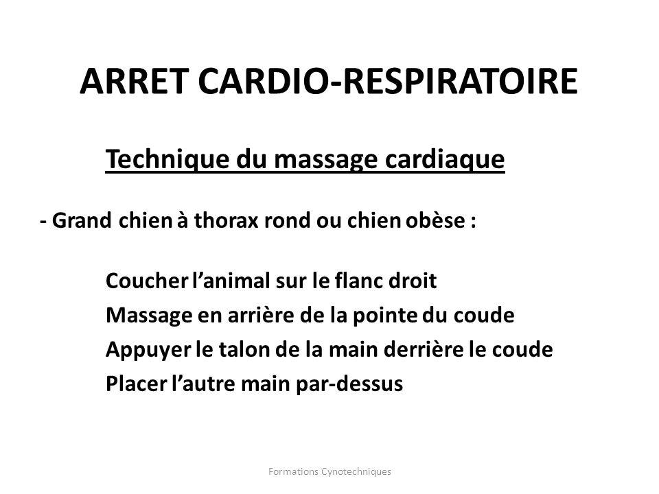 Formations Cynotechniques Technique du massage cardiaque - Grand chien à thorax rond ou chien obèse : Coucher lanimal sur le flanc droit Massage en ar