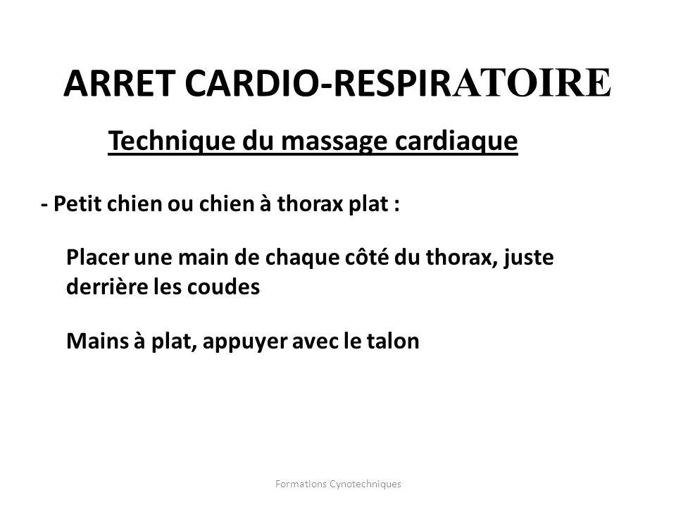 Formations Cynotechniques ARRET CARDIO-RESPIR ATOIRE Technique du massage cardiaque - Petit chien ou chien à thorax plat : Placer une main de chaque c