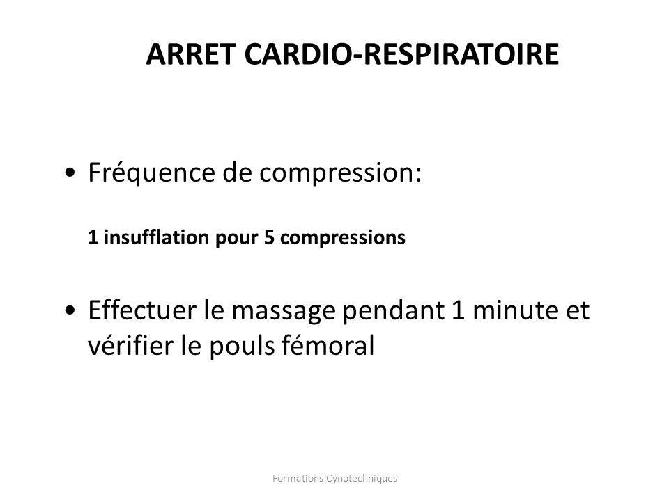 Formations Cynotechniques ARRET CARDIO-RESPIRATOIRE Fréquence de compression: 1 insufflation pour 5 compressions Effectuer le massage pendant 1 minute