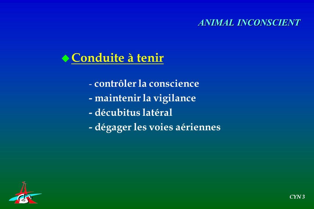 u Conduite à tenir - contrôler la conscience - maintenir la vigilance - décubitus latéral - dégager les voies aériennes ANIMAL INCONSCIENT CYN 3