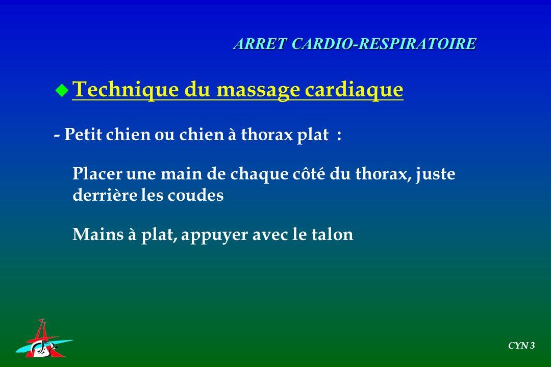 ARRET CARDIO-RESPIRATOIRE u Technique du massage cardiaque - Petit chien ou chien à thorax plat : Placer une main de chaque côté du thorax, juste derr