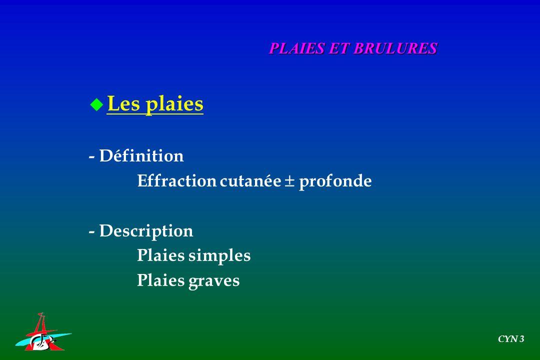 u Les plaies - Définition Effraction cutanée profonde - Description Plaies simples Plaies graves PLAIES ET BRULURES CYN 3