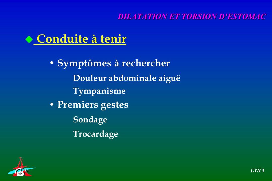 u Conduite à tenir Symptômes à rechercher Douleur abdominale aiguë Tympanisme Premiers gestes Sondage Trocardage DILATATION ET TORSION DESTOMAC CYN 3