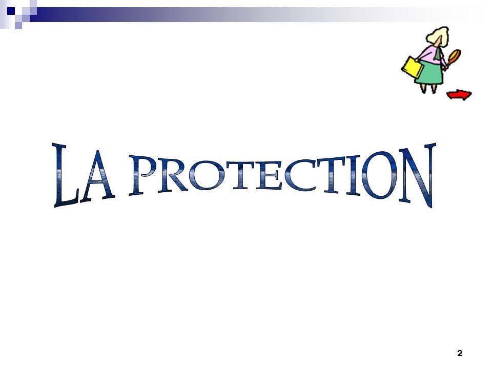 1 PROGRAMME 1.La protection 1. La protection 2. Lalerte 2.