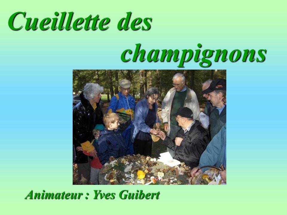 Cueillette des champignons Animateur : Yves Guibert