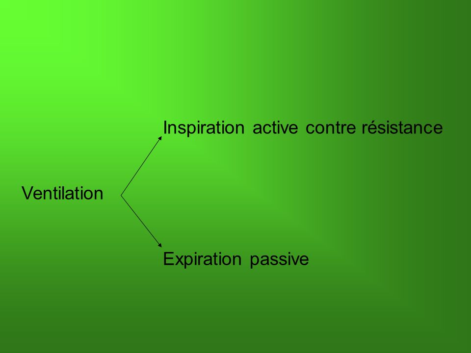 Inspiration active contre résistance Ventilation Expiration passive