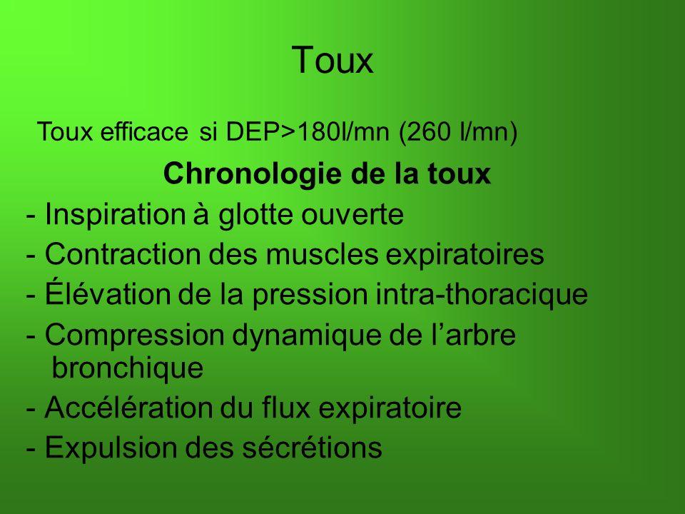 Toux Toux efficace si DEP>180l/mn (260 l/mn) Chronologie de la toux - Inspiration à glotte ouverte - Contraction des muscles expiratoires - Élévation de la pression intra-thoracique - Compression dynamique de larbre bronchique - Accélération du flux expiratoire - Expulsion des sécrétions
