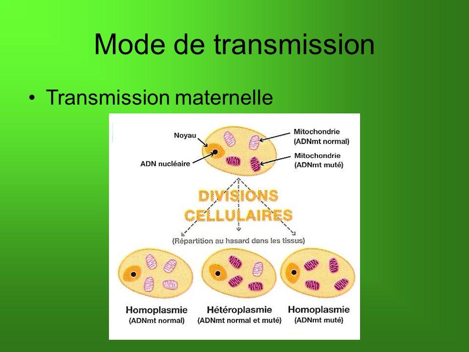 Mode de transmission Transmission maternelle