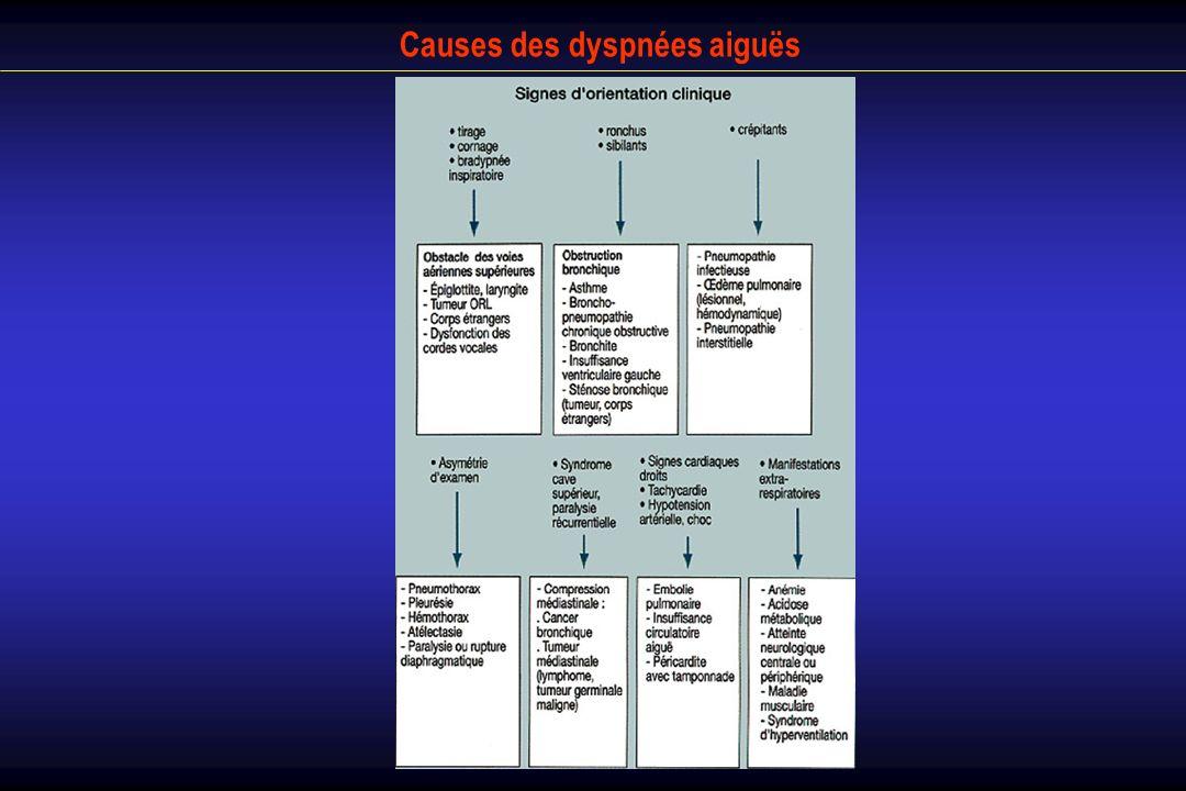 Causes des dyspnées aiguës