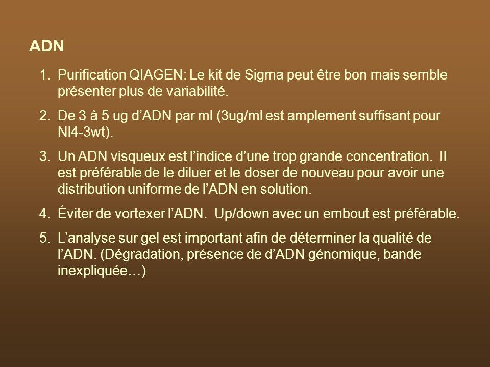 1.Purification QIAGEN: Le kit de Sigma peut être bon mais semble présenter plus de variabilité. 2.De 3 à 5 ug dADN par ml (3ug/ml est amplement suffis