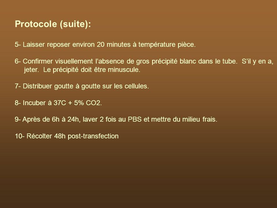 Protocole (suite): 5- Laisser reposer environ 20 minutes à température pièce. 6- Confirmer visuellement labsence de gros précipité blanc dans le tube.