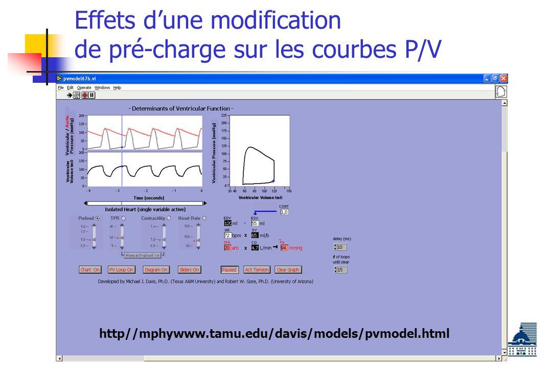 Effets dune modification de pré-charge sur les courbes P/V http//mphywww.tamu.edu/davis/models/pvmodel.html
