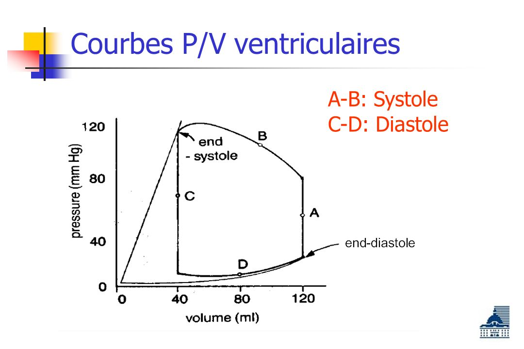 Courbes P/V ventriculaires A-B: Systole C-D: Diastole