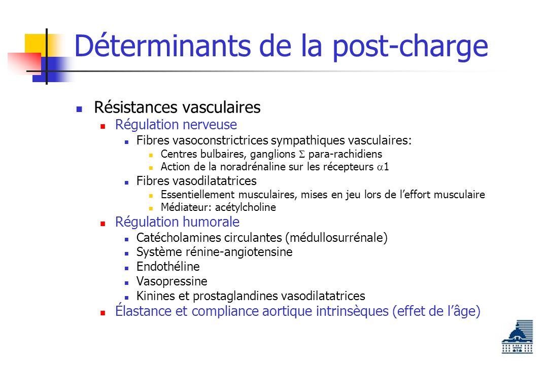 Déterminants de la post-charge Résistances vasculaires Régulation nerveuse Fibres vasoconstrictrices sympathiques vasculaires: Centres bulbaires, ganglions para-rachidiens Action de la noradrénaline sur les récepteurs 1 Fibres vasodilatatrices Essentiellement musculaires, mises en jeu lors de leffort musculaire Médiateur: acétylcholine Régulation humorale Catécholamines circulantes (médullosurrénale) Système rénine-angiotensine Endothéline Vasopressine Kinines et prostaglandines vasodilatatrices Élastance et compliance aortique intrinsèques (effet de lâge)