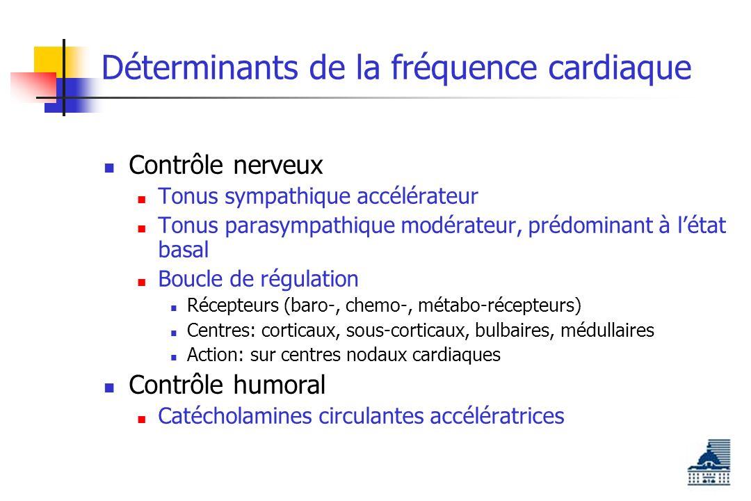 Déterminants de la fréquence cardiaque Contrôle nerveux Tonus sympathique accélérateur Tonus parasympathique modérateur, prédominant à létat basal Boucle de régulation Récepteurs (baro-, chemo-, métabo-récepteurs) Centres: corticaux, sous-corticaux, bulbaires, médullaires Action: sur centres nodaux cardiaques Contrôle humoral Catécholamines circulantes accélératrices
