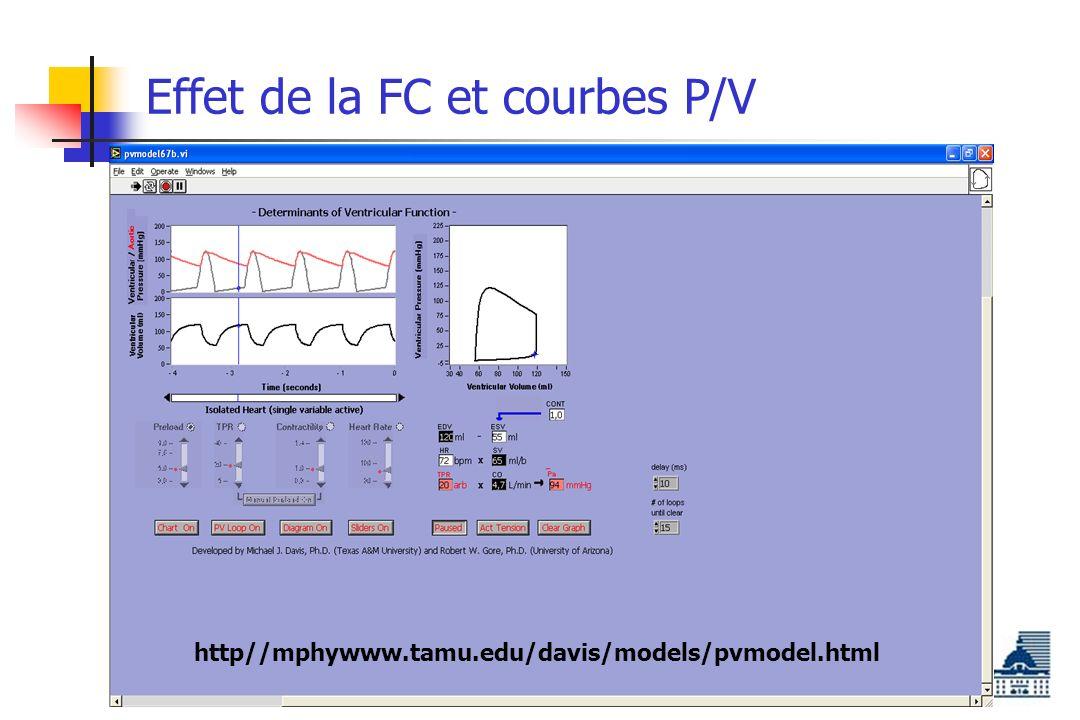 Effet de la FC et courbes P/V http//mphywww.tamu.edu/davis/models/pvmodel.html