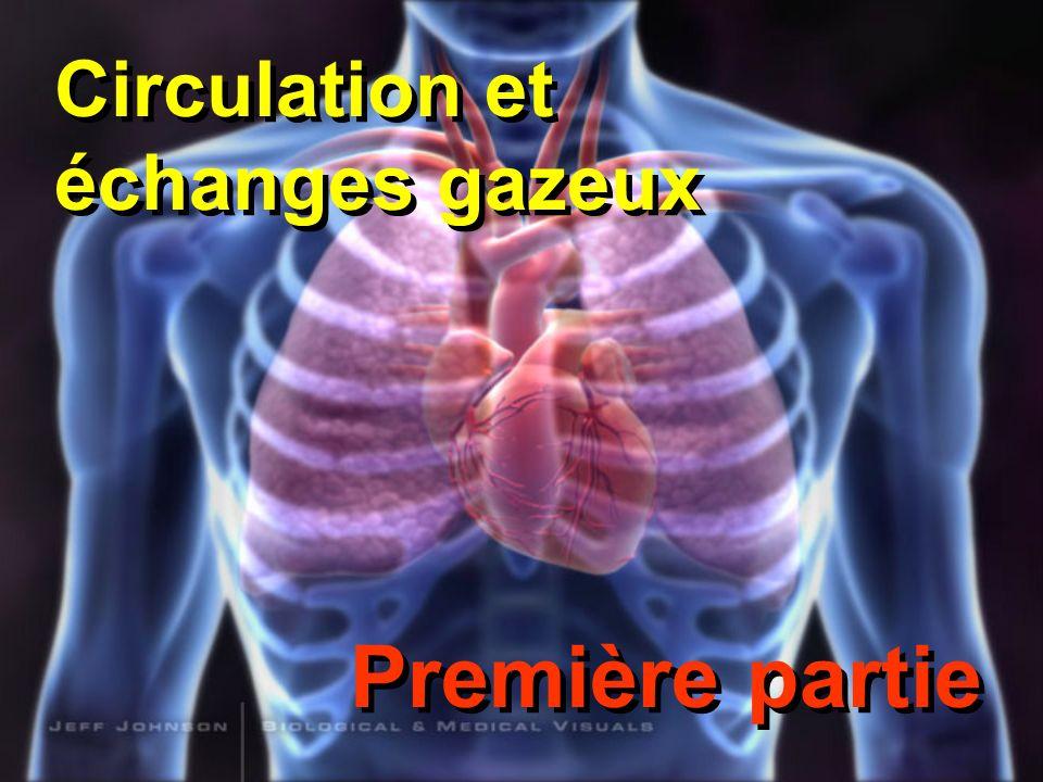 Le système circulatoire La principale fonction du système circulatoire est de transporter des substances dune partie du corps à un autre (les gaz respiratoires, la chaleur, amener les nutriments et enlever les déchets).