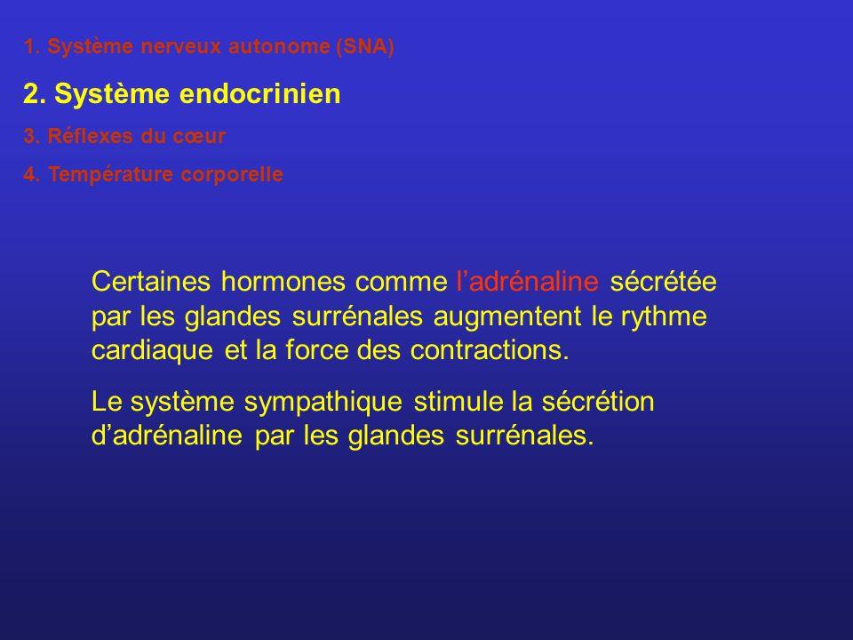 1. Système nerveux autonome (SNA) 2. Système endocrinien 3. Réflexes du cœur 4. Température corporelle Certaines hormones comme ladrénaline sécrétée p