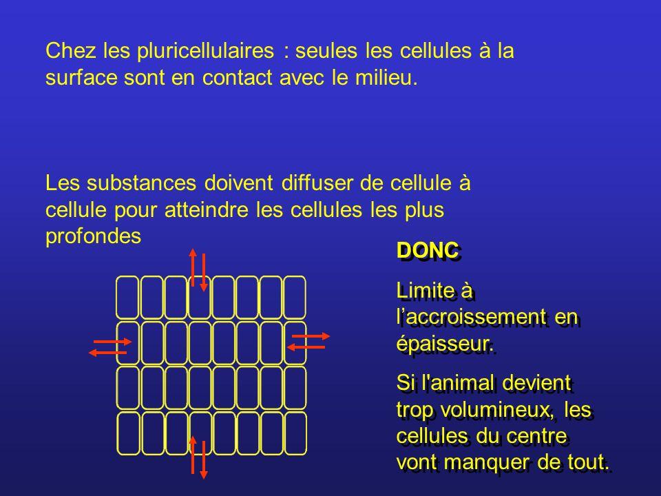 Chez les pluricellulaires : seules les cellules à la surface sont en contact avec le milieu. Les substances doivent diffuser de cellule à cellule pour