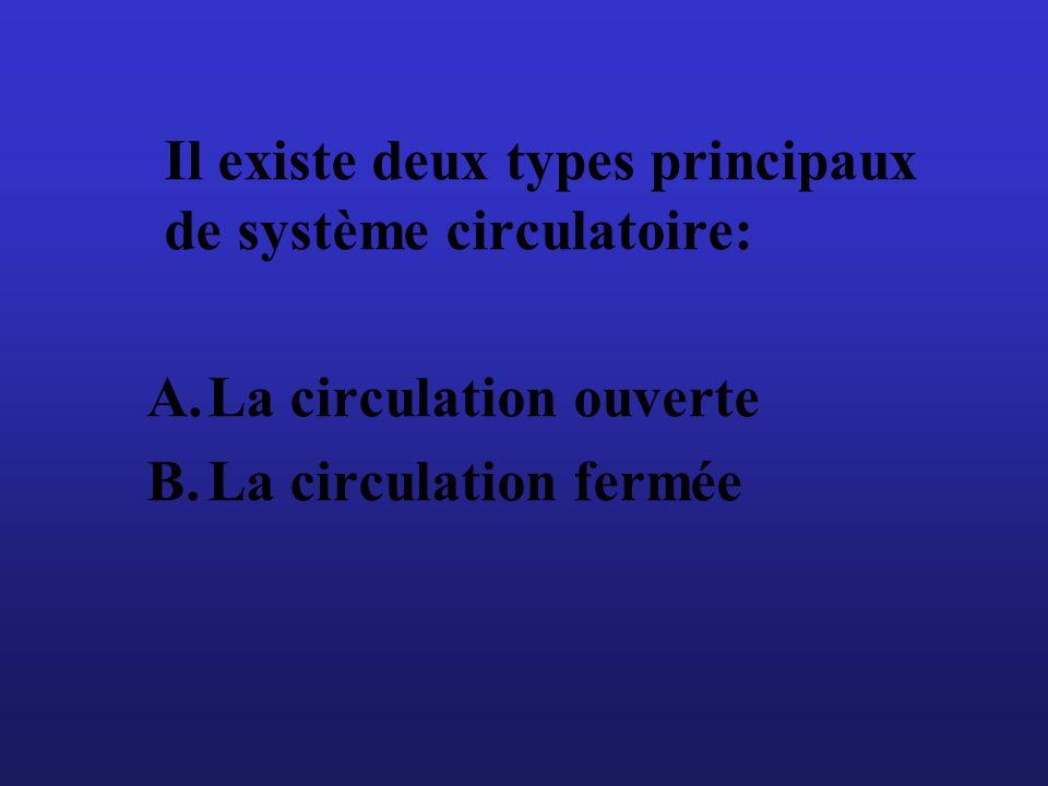Il existe deux types principaux de système circulatoire: A.La circulation ouverte B.La circulation fermée